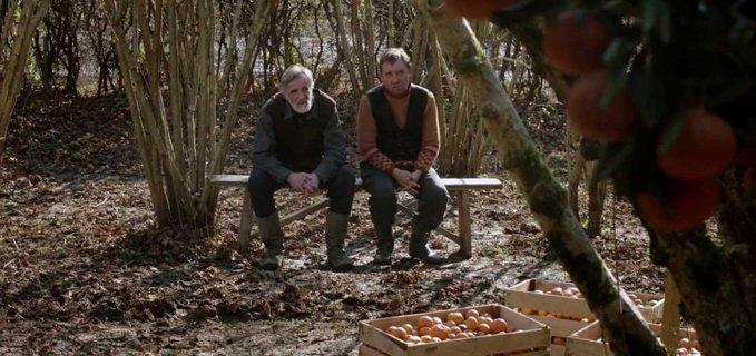 tangerines film estonia